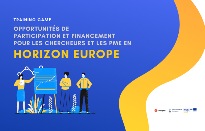 Workshop Online sur les opportunités de participation des PME et des universités à Horizon Europe